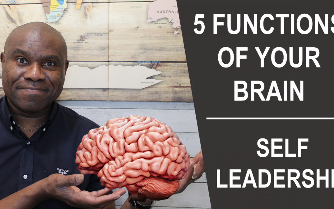 5 Important Functions of the Brain   Self Leadership
